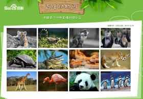 百度动物园上线,中国首个动物直播网络平台
