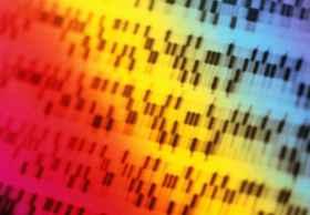 谷歌将开放云平台:欲破解自闭症遗传密码